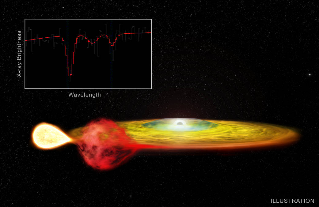 The very small accretion disks in ultracompact X-ray binaries are special laboratories in which to study diskaccretion and outflows. Credit: CXC/M.Weiss
