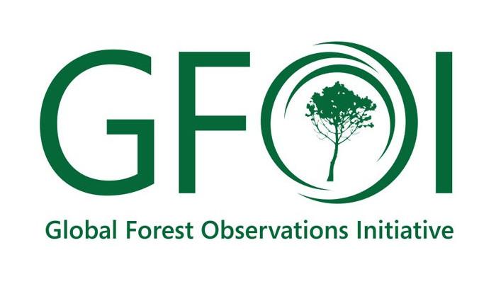 GFOI logo