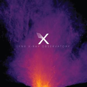 lynx (002)